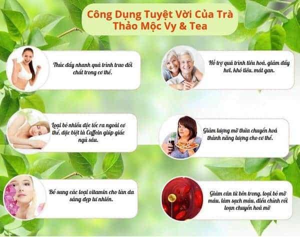 co nen dung tra giam can vy tea khong 2 - Có nên dùng trà giảm cân Vy Tea không?