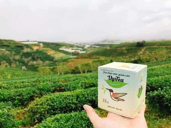 co nen dung tra giam can vy tea khong 4 - Có nên dùng trà giảm cân Vy Tea không?