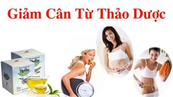 su khac biet cua tra vy tea 03 - Đâu là sự khác biệt của trà Vy Tea với những loại trà giảm cân khác